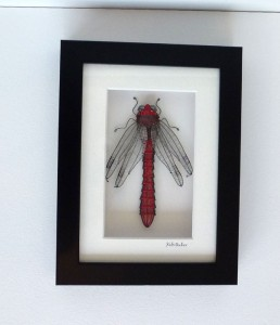 kate Packer dragonfly