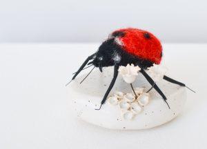 ladybirdWeb1 - Copy