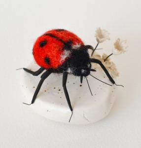 ladybirdWeb2 - Copy