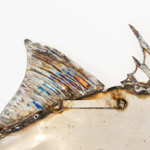 Mike Tucker - Stainless Steel Triggerfish, Back